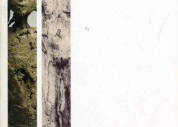Catalogue Exposition Bouchart-Maes 2009 - Galerie Felli