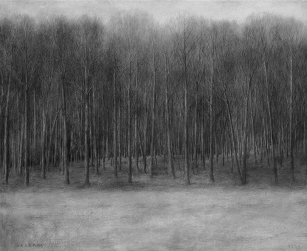 Ph.Ségéral - Bois - Mine de Plomb sur papier - 110 x 134 cm - 2009