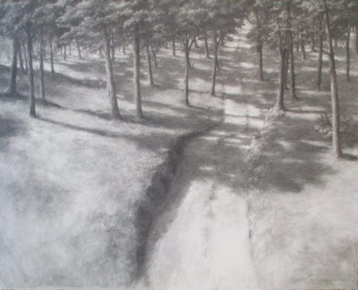 Ph.Ségéral - Chemin - Mine de Plomb sur papier - 120 x 148 cm - 2011