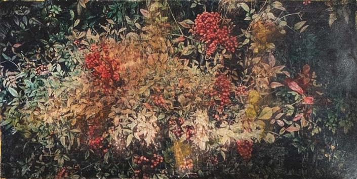 Série « herbiers - 30 x 15 cm - 2021