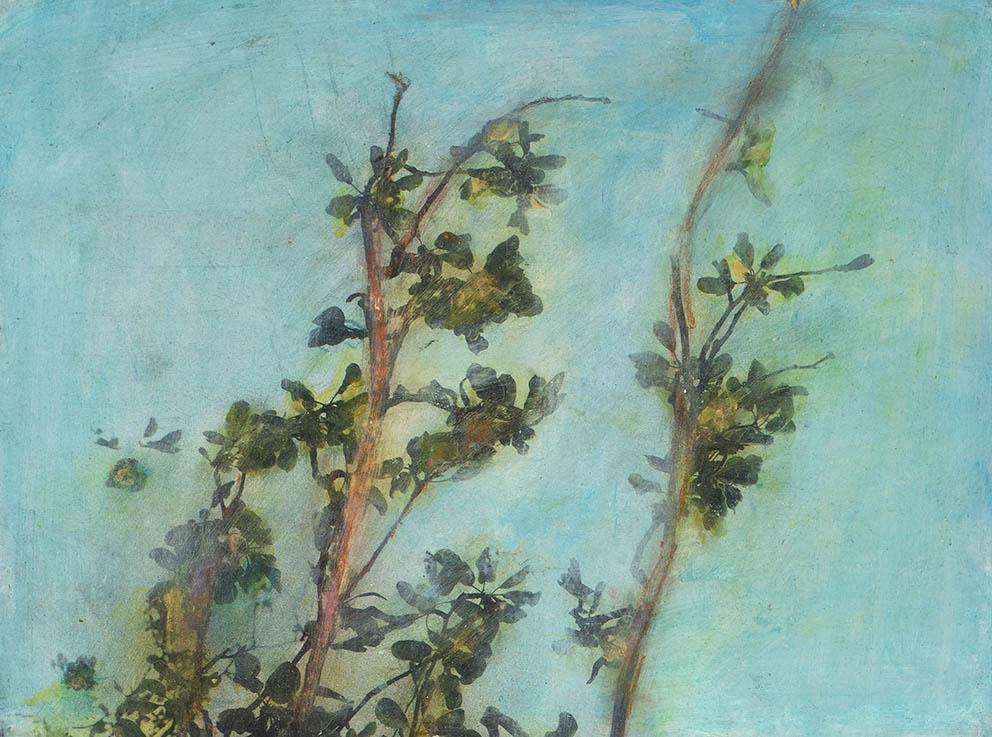 "Série ""Branches"" II - 30 x 40 cm"