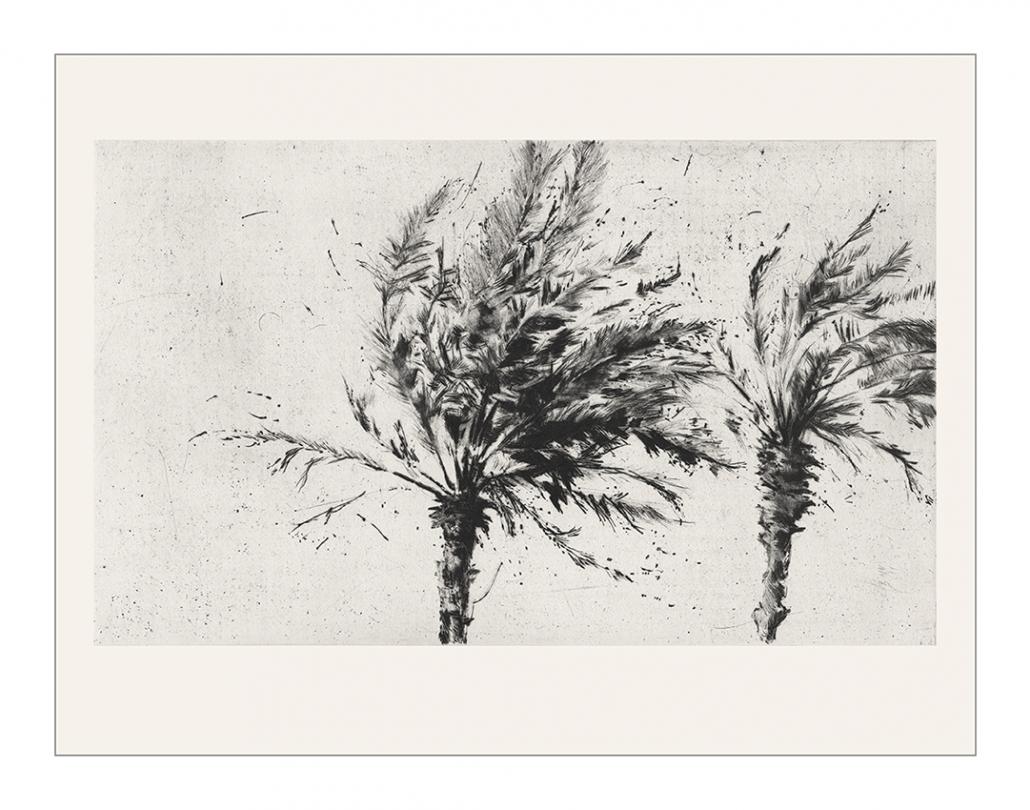Drâa - Pointe sèche sur cuivre / 34 x 43,5 cm - Papier: Hahnemühle 300g - Edition 15