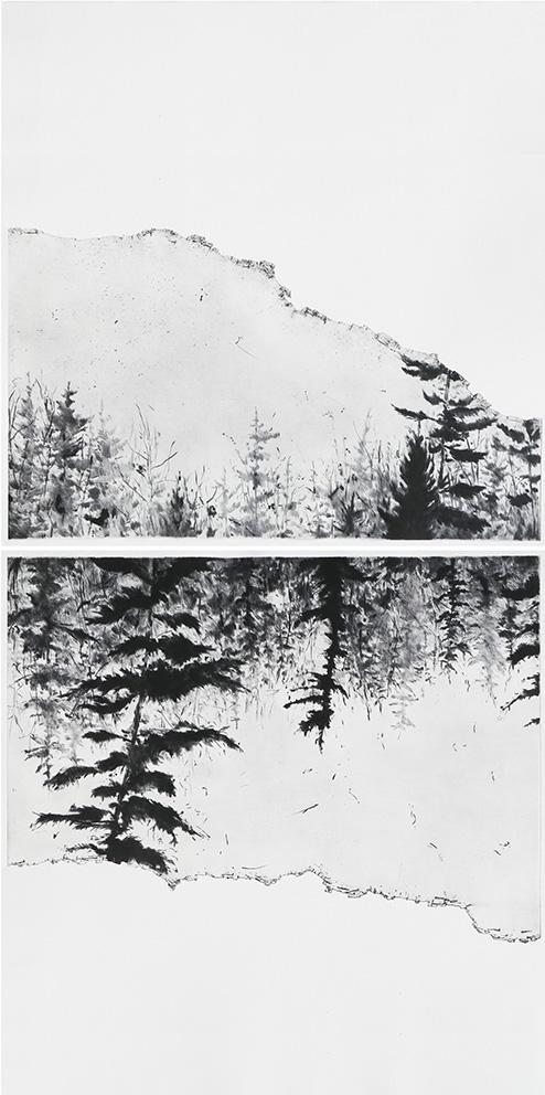 401 I - (2019) - Edition 10 ex - Pointe sèche - 67 x 67 cm (x2)