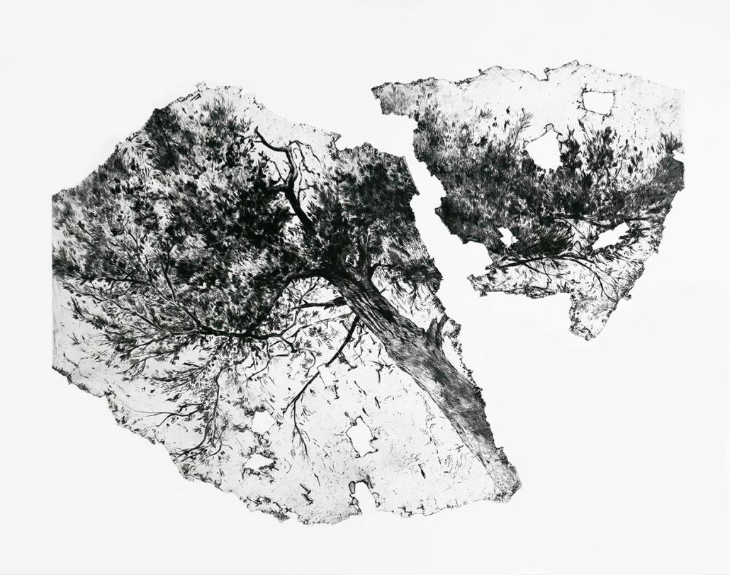 Grand pin - 70 x 90 cm (2020) - Ex 2/10 - édition: 15 - Pointe sèche