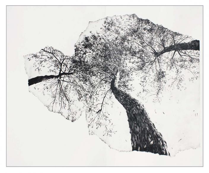 Les trois pins - 100 x 130 cm - pointe sèche sur deux plaques de zinc - Papier: Hahnemühle 300g - Edition 10