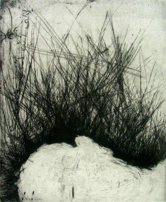 D.Maes - ou-vas-tu ? - 2008 - 60 x 48 cm - Gravure - 20 ex