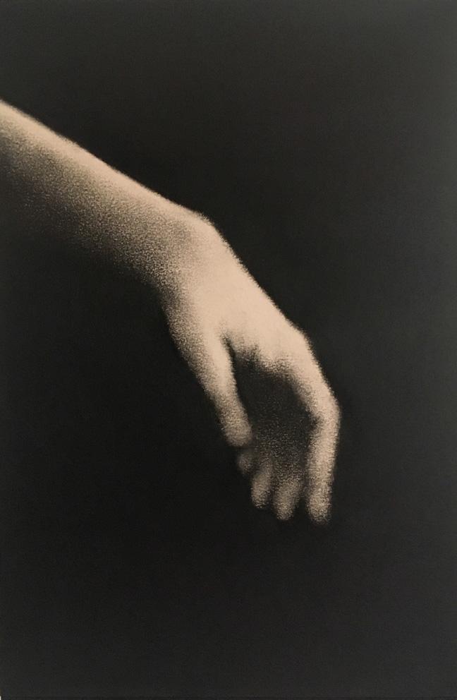 Marina Ho - main 2 - 30 x 20 cm - Fusain sur papier sur bois