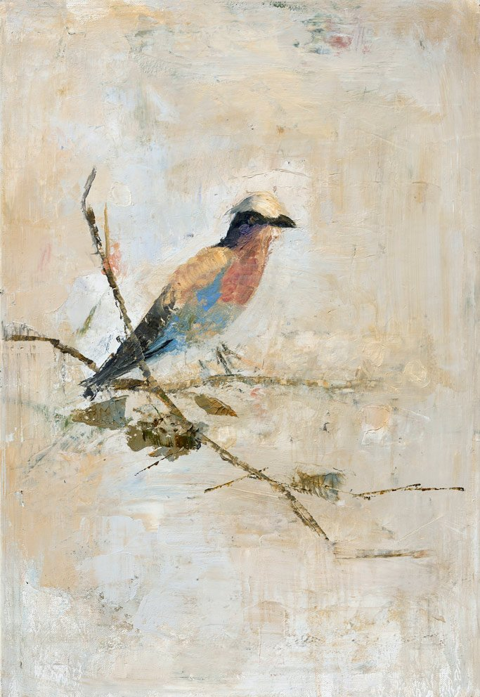 Swallow Bird - 2016 - 50 x 73 cm - Huile et cire sur toile (Oil and wax and canvas)
