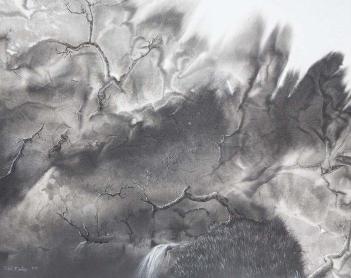 Paysage abrupt ne d'une tache d'encre - 40 X 50 cm - encre et acrylique sur papier chinois marouflé sur toile - 2018