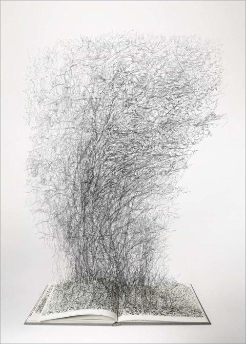 B.Flachot - APortéedeMain#07-50x70 cm