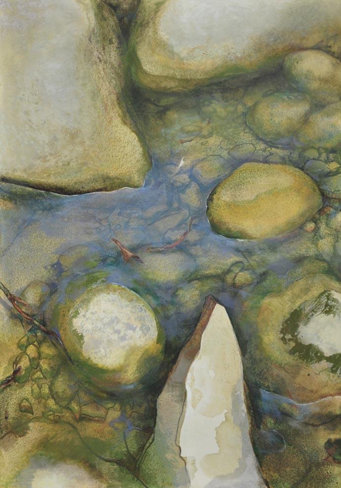 Le monde vu par...une libellule - Huile sur toile - 116 x 81cm