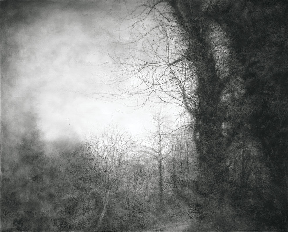 Among the trees - Charcoal & graphite on canvas - 91 x 114 cm