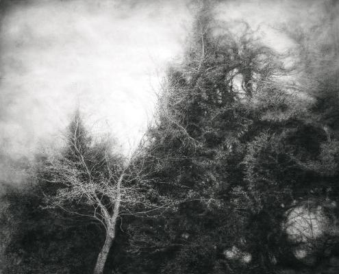 Inscape - Charcoal & graphite on canvas - 91 x 114 cm