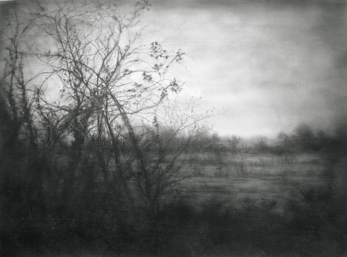 A Sudden Softness - 55,8 x 76,2 cm - Charcoal & Graphite on Gessoed Arches