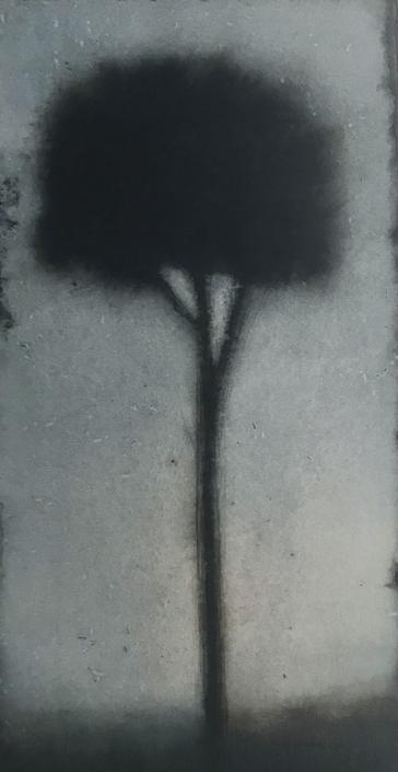 Petit arbre 4 - 38 x 20 cm - Encre et brou de noix sur papier marouflé sur toile