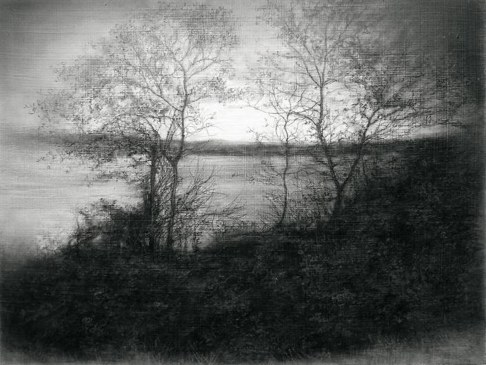 Vestigial Landscape (River's Edge II) - 30,4 x 40,6 cm -Charcoal, Graphite & Poppy Oil on Gessoed Wood
