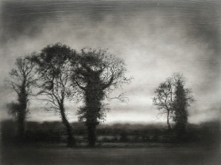 Vestigial Landscape, Roadside Trees Early Winter, Final - 30,6 x 40,6 cm - Charcoal, Graphite & Poppy Oil on Gessoed Wood