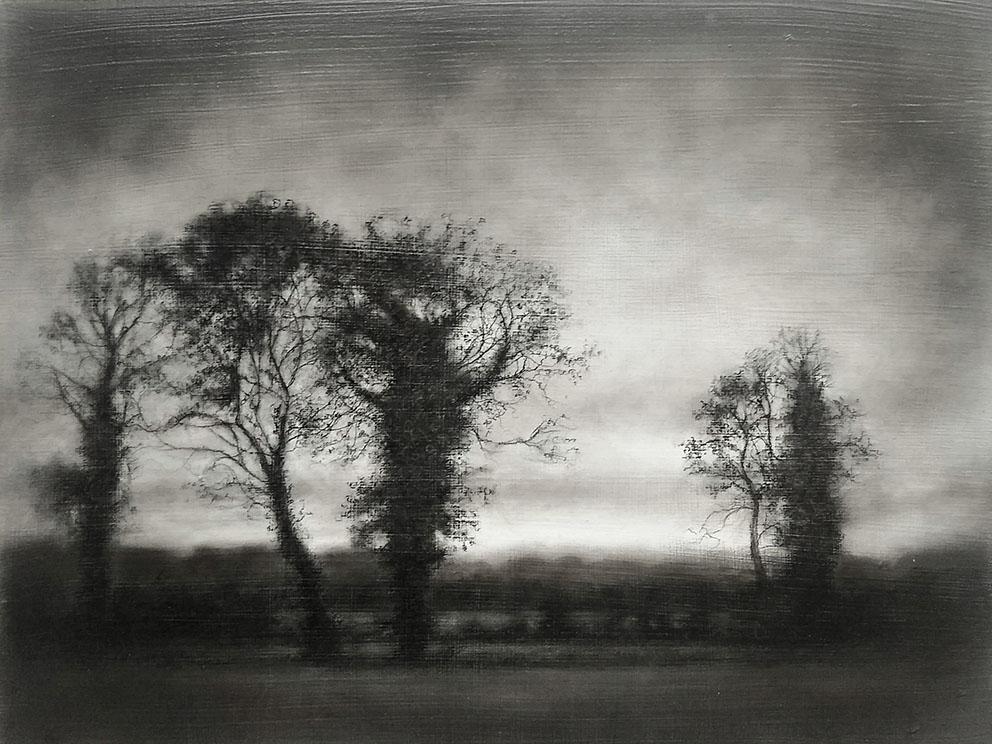 Vestigial Landscape, Roadside Trees Early Winter, Final - 30,6 x 40,6 cm - Charcoal, Graphite & Poppy Oil on Gessoed Wood
