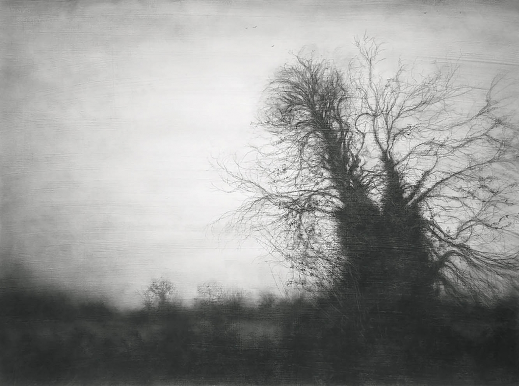 A most familiar tree final - 55,8 x 76,2 cm - Charcoal & Graphite on Gessoed Arches