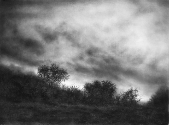 Slowly the sky darkens - 55,6 x 76,2 cm - Charcoal & Graphite on Gessoed Arches
