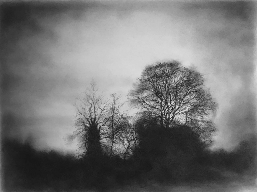 Vestigial Landscape 1 - Charcoal & Graphite on Gessoed Arches - 46 x 61 cm