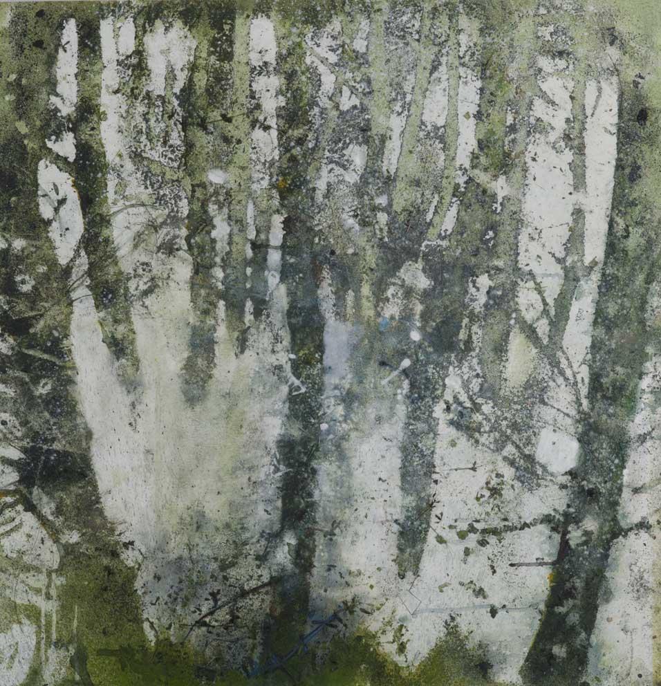 Bois sans espoir - 74 x 72 cm - 2016 - Acrylique sur bois
