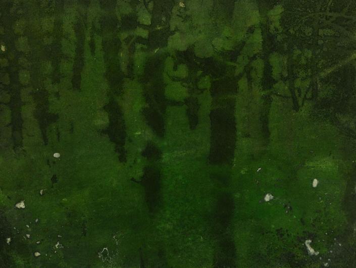 Katarina Axelsson - Stammar 15 - 42 x 50 cm - Acrylique sur bois