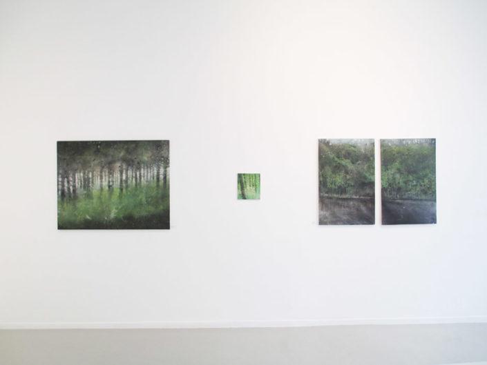 Exposition Galerie Felli, Juin 2017