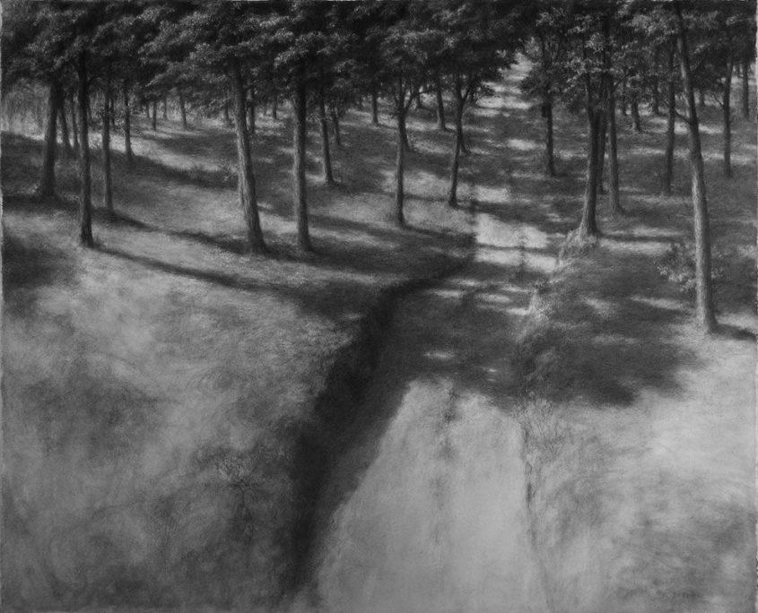P.SEGERAL - Chemin bois clair