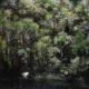 Eric Roux-Fontaine - Pacific, 120 x 140 cm, huile et poudre de marbre sur toile
