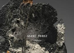 Couverture du catalogue de l'exposition de Marc Perez, Octobre 2021